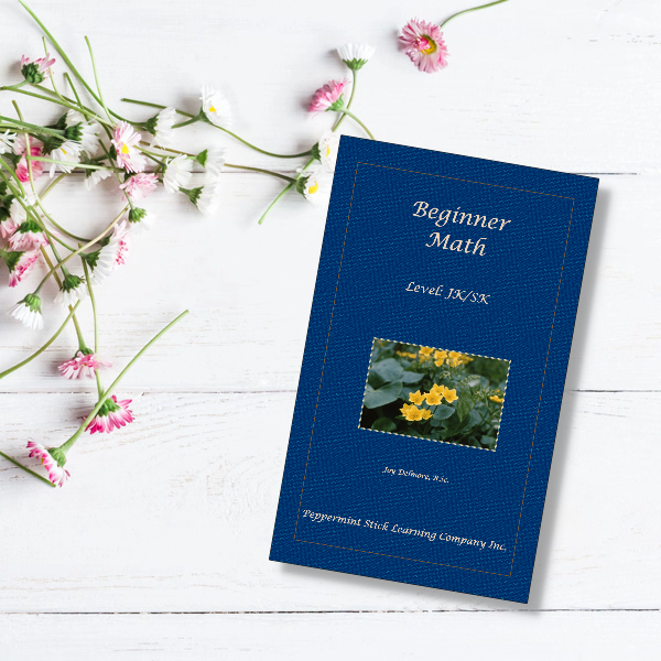 Beginner Math 1st edition