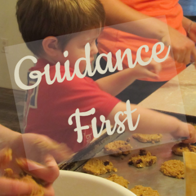 Guidance First Inquiry Based Science
