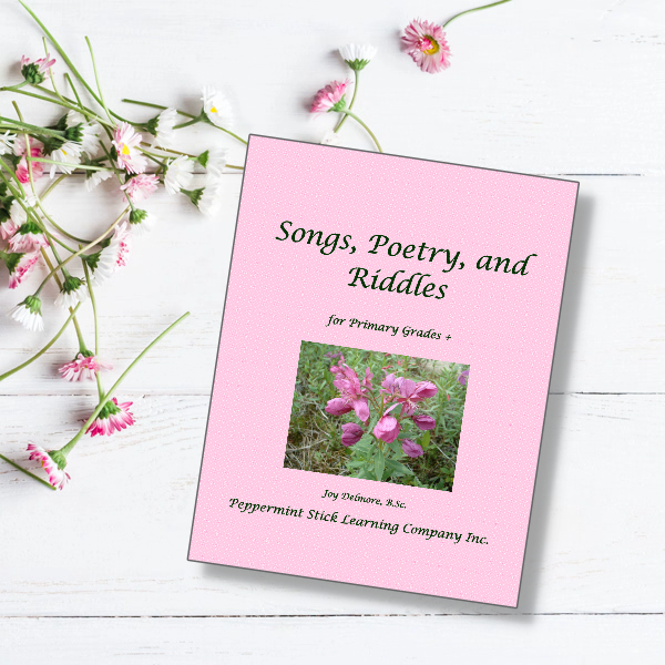 songs, riddles, poetry book
