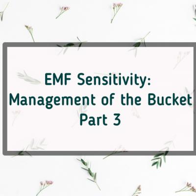EMF Manage Bucket Part 3