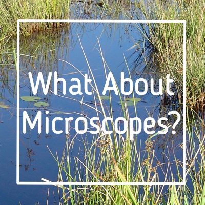 Student Microscopes and Homeschooling