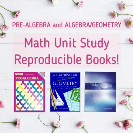 PreAlgebra Algebra Geometry Math curriculum individual