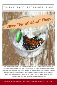 Pinnable Graphic When My Schedule Flops