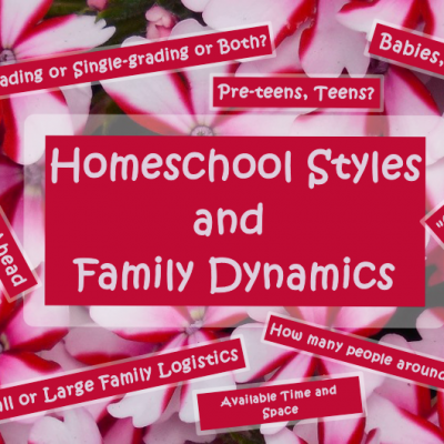 Homeschool Styles and Family Dynamics fi