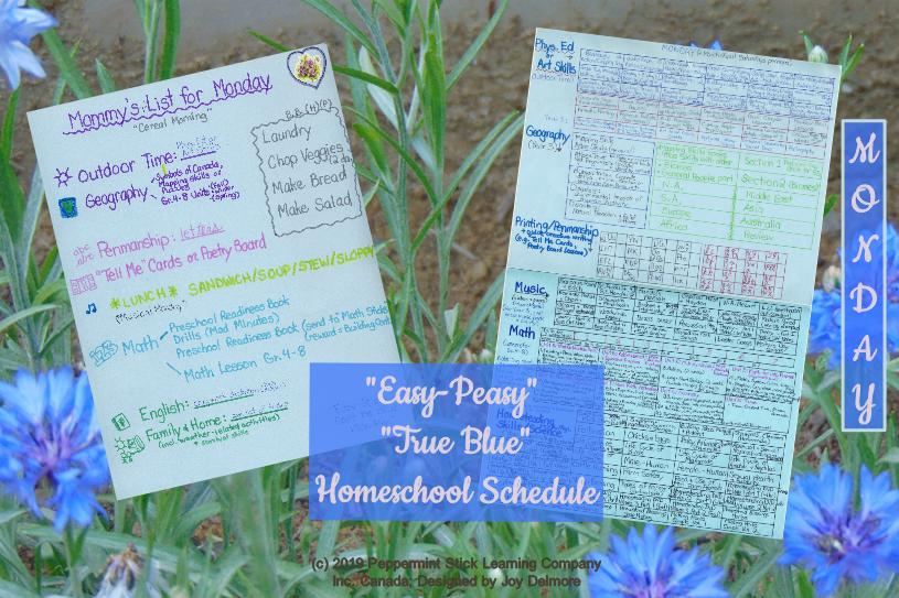 hs schedule m2