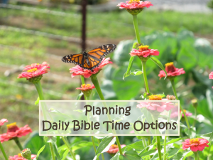 Planning Daily Bible Time Options fi