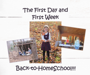 first day back to home schooling week