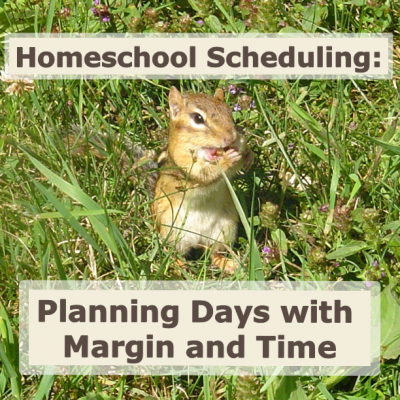 Planning Days with Margin and Time HS scheduling