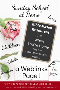 Pin for SS at Home Weblinks Page